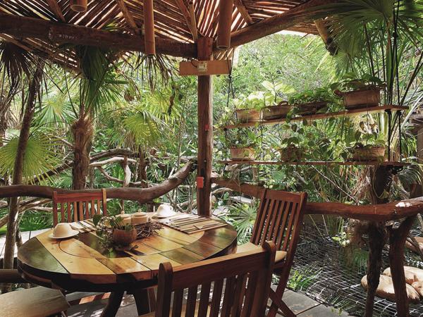 【トゥルム レストラン】Cenote ツリーハウスでワッフル朝食♡